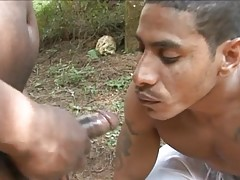 The scene starts with two black guys making out. One of them reaches inside his partner`s pants and takes out a rock-hard black cock to start yanking it. Soon he goes down on it, giving it a good sucking and forcing it to the back of his throat before he